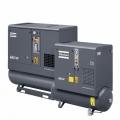 Compressor a Parafuso GX2-11